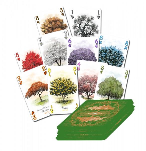 aboretum-cards.jpg