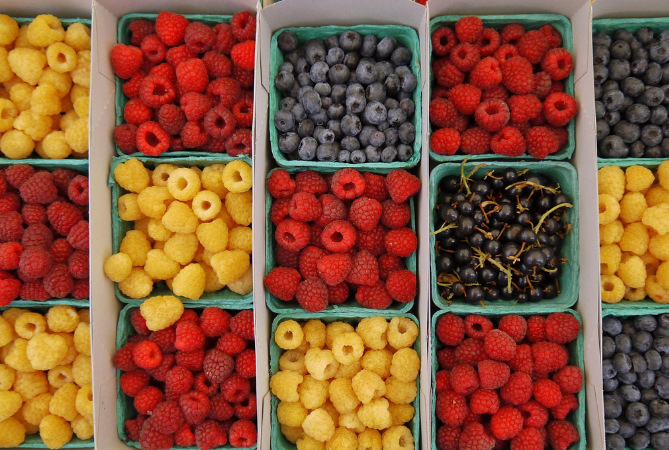 Berries-main-photo.png