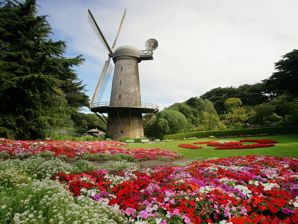 north_dutch_windmill_and_queen_wilhelmina_tulip_gardens__golden_gate_park__san_francisco__california.jpg