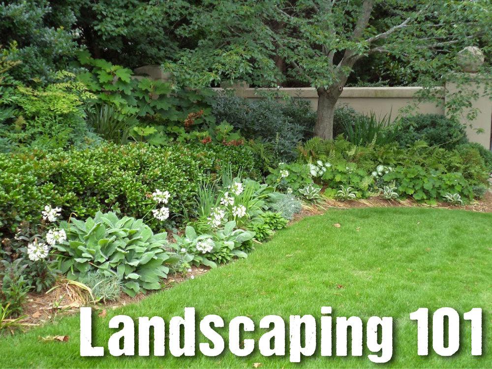 landscaping 101.jpg