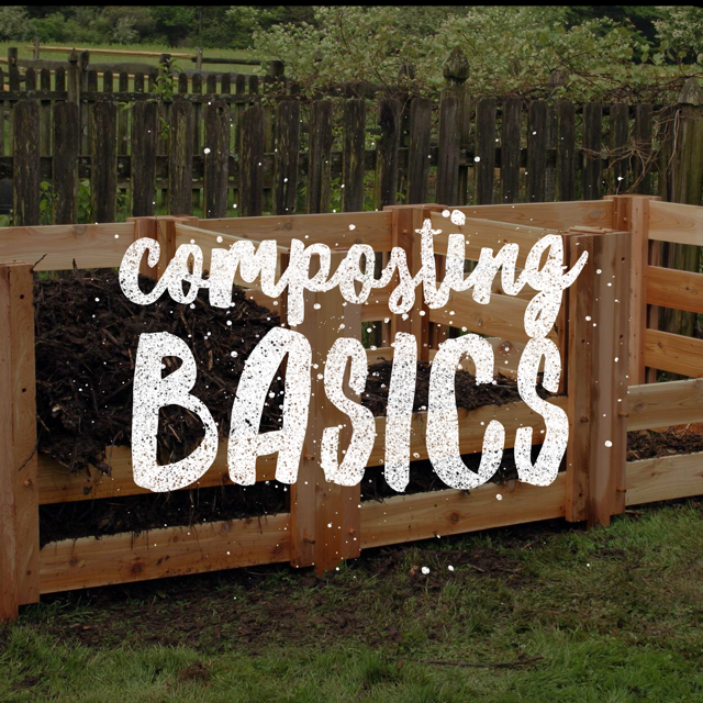 composting basics.png
