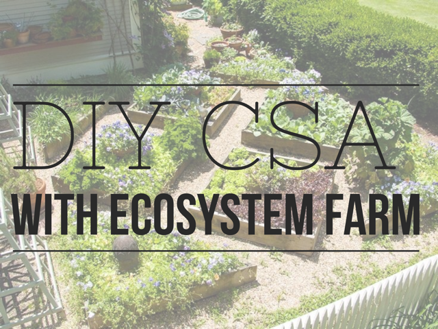DIY CSA - Ecosystem Farm.png