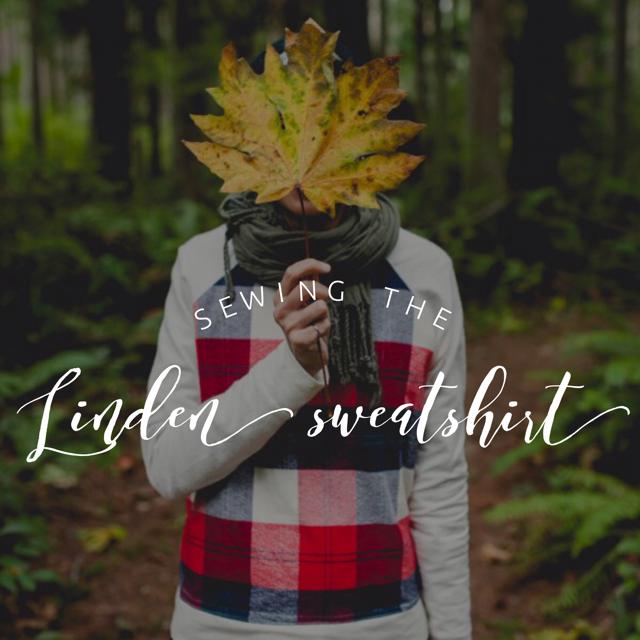Linden Sweatshirt.png