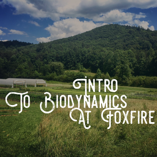 Intro to Biodynamics.png