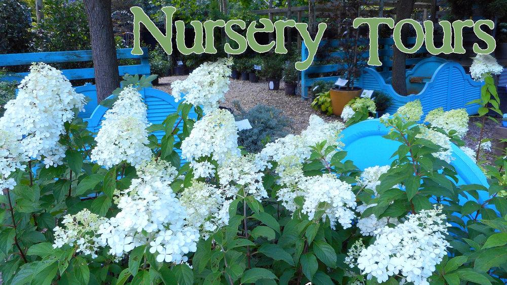 nursery-tours-pic-e1508607961436.jpg