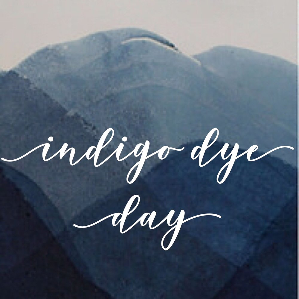 Indigo Dye Day.jpeg