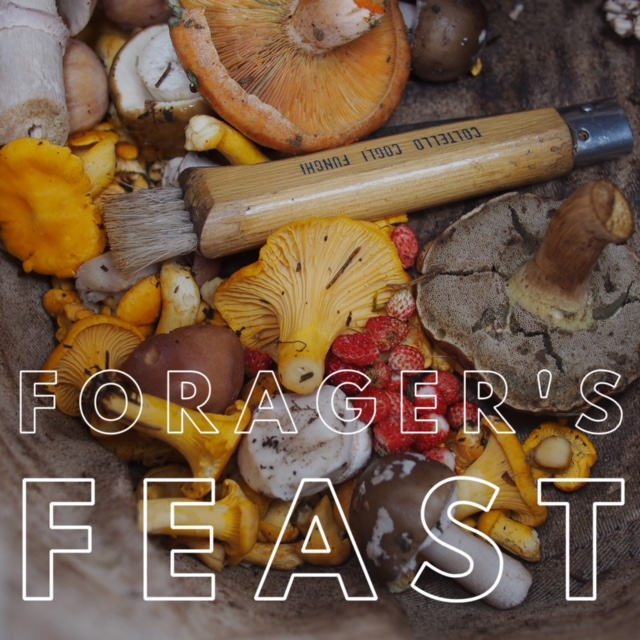 Forager's Feast.jpeg