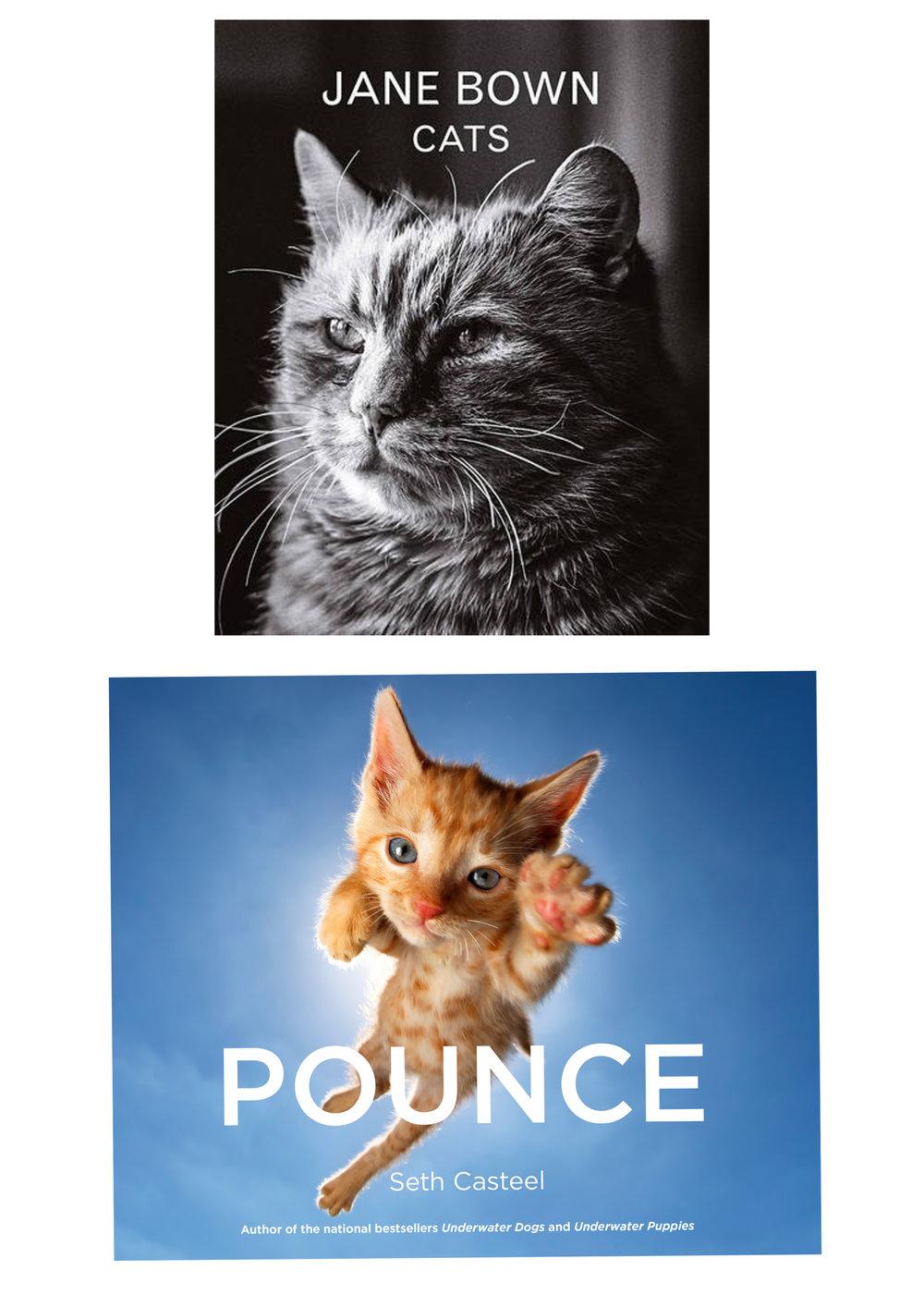 books for cat lovers.jpg