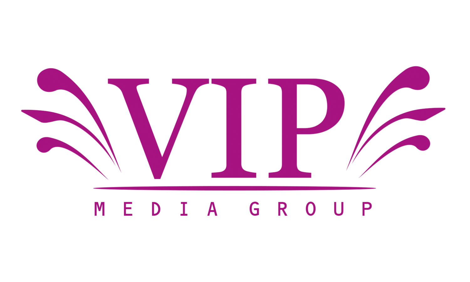 Asian Wedding Photography and Cinematography - VIP Media Group