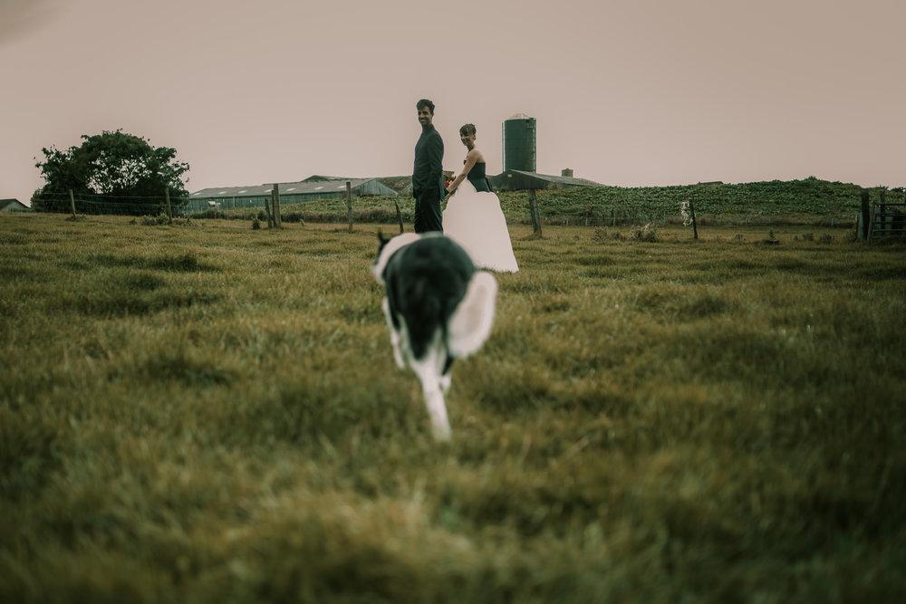 bruidsfotografie-amsterdam-utrecht-mark-hadden-wedding-photography-Cathrin-Michael-355-3.jpg