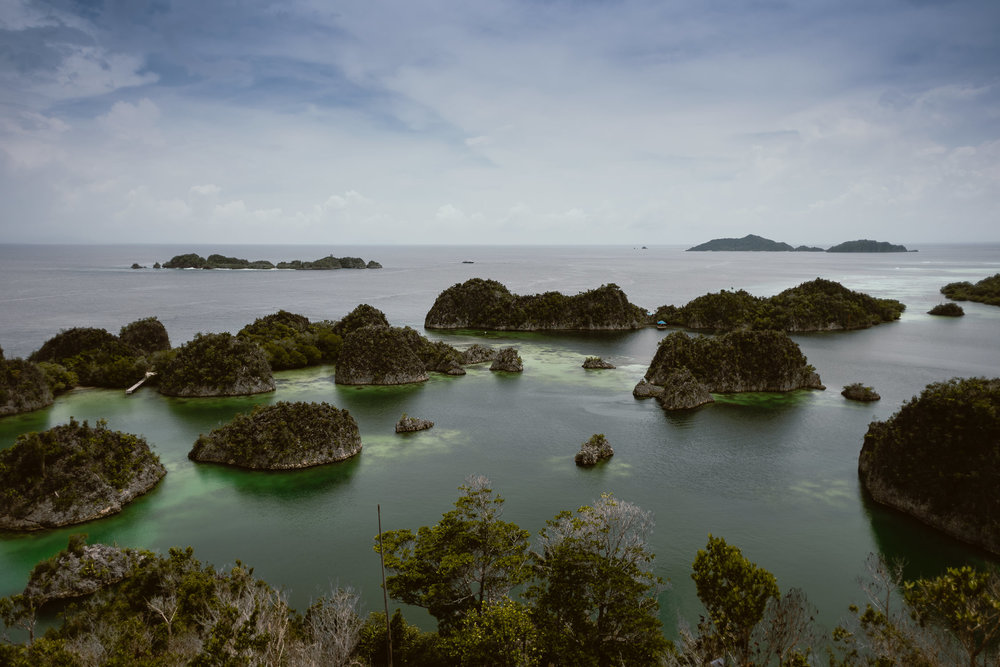 Raja Ampat, one of the most remote places in the world with the most diversity of underwater wildlife anywhere.