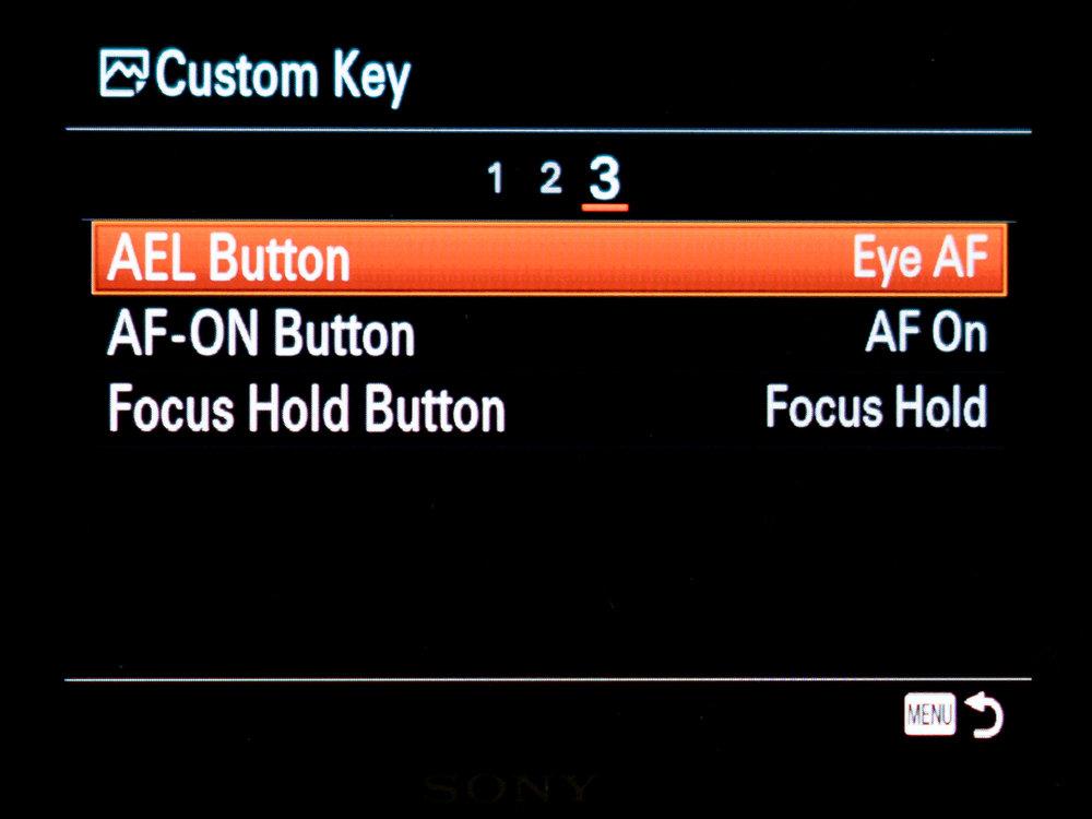Sony A7riii custom setup