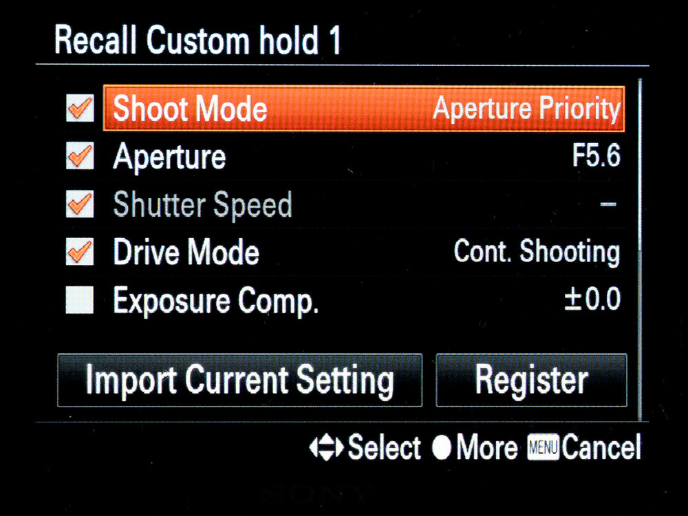 Sony A7Riii recall custom hold 2