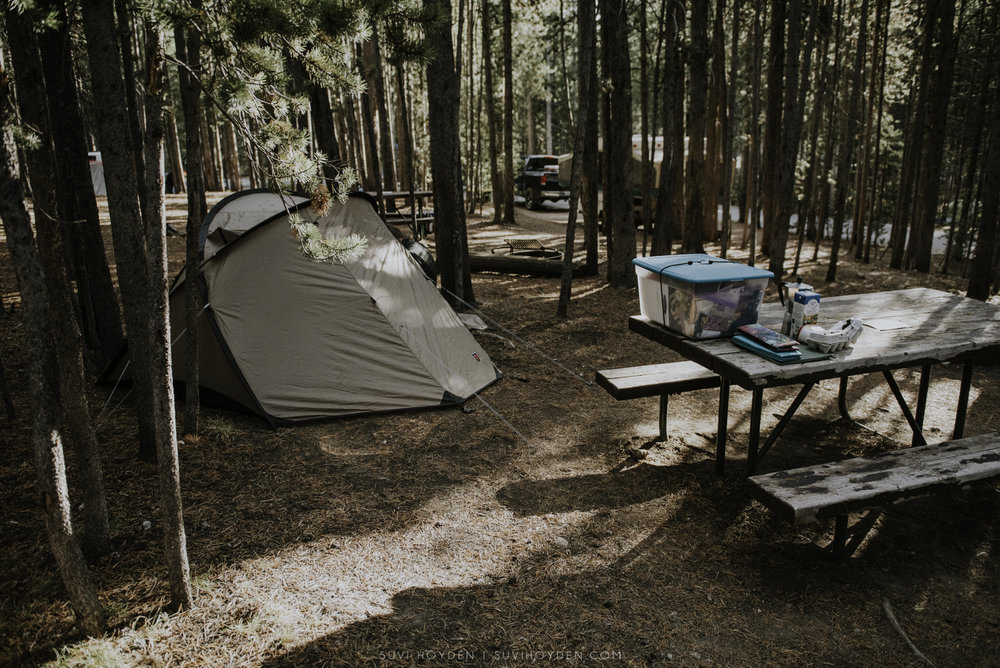 Canyon Campground - Yellowstone National Park
