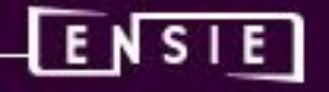 Logo Ensie violet.jpg