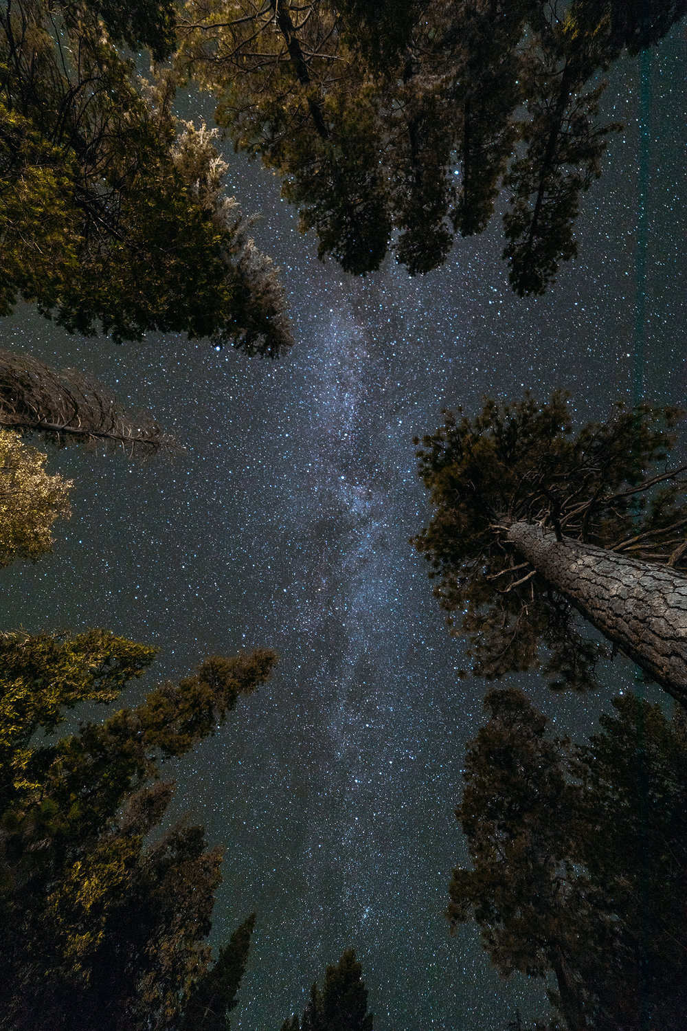 Camp Astro photography 1.jpg