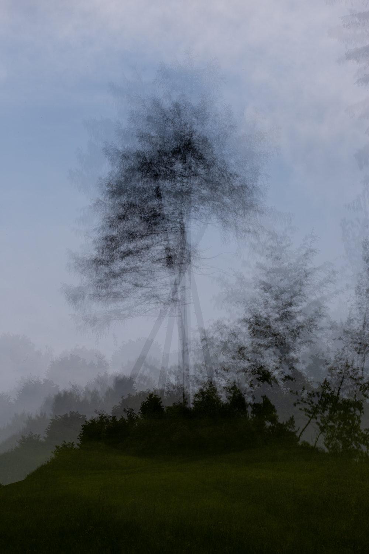 1oo7-2.jpg