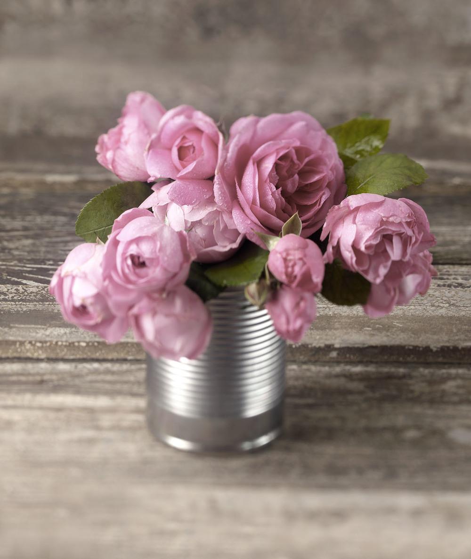 Roses & Tin Can
