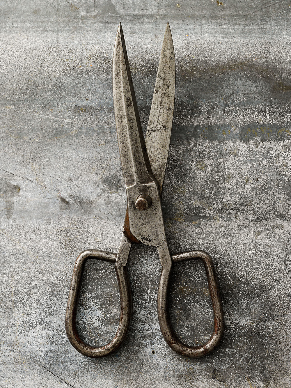 #11 Steel Sissors