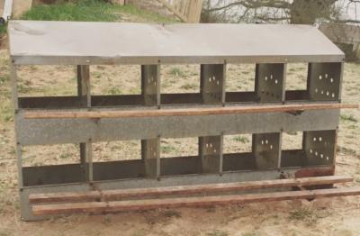 10 Hen Nesting Box