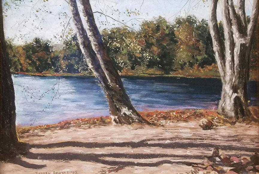 """""""Delaware Scene"""" by Judith Banyas Size: 11x14 in. $150"""