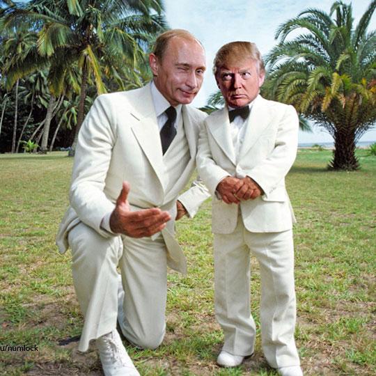 Tiny Trump8.jpg