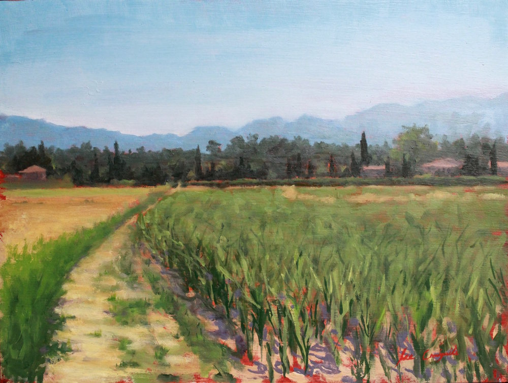 """Tuscan Landscape, Midday"", 12x16 in, Oil on panel"