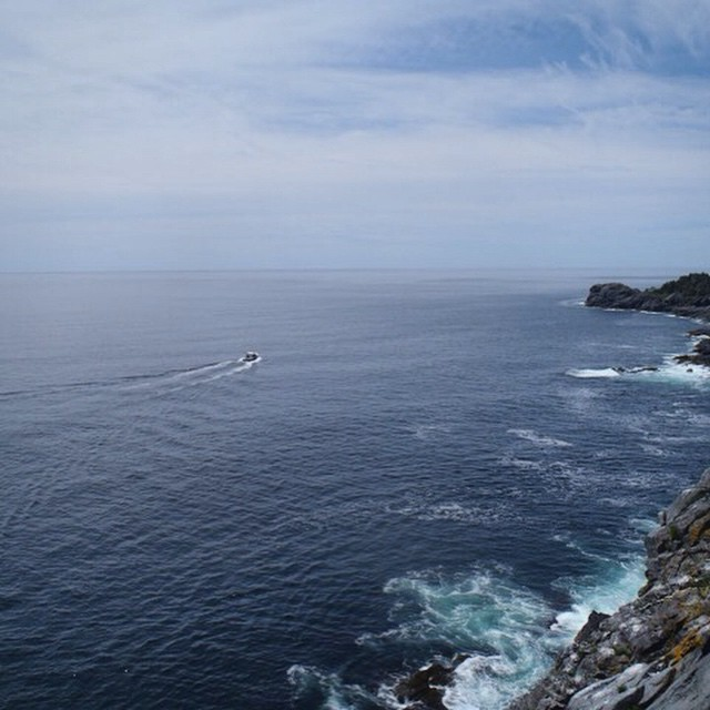 Spent another day on top of the tallest cliffs along the coast of Maine.jpeg