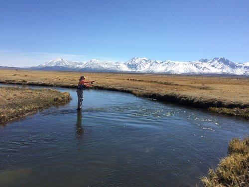 fishing — blog — Jessica Lee Ives