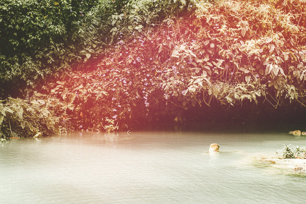 ROGUE-ALBUM-MEKONG-LUANG-PRABANG.jpg