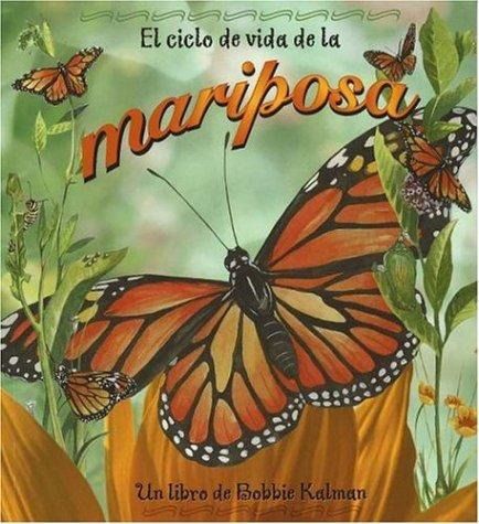 El ciclo de la vida de la mariposa