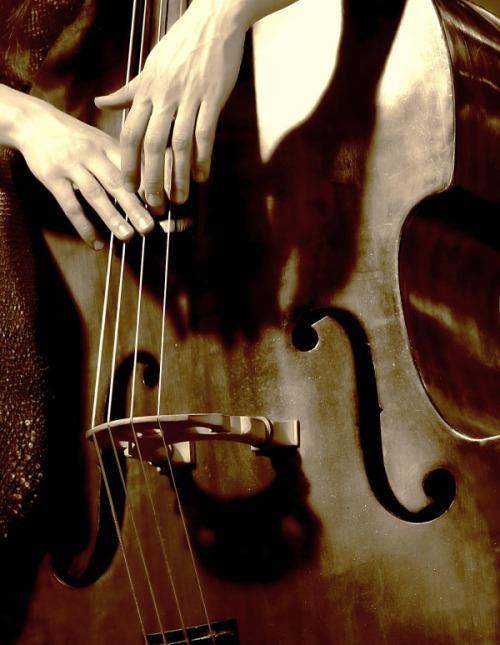colorado-symphony-chiropractor.jpg