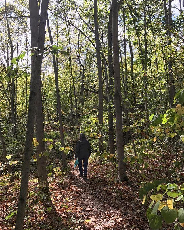 Lady of the Wood #hikeswithmoms