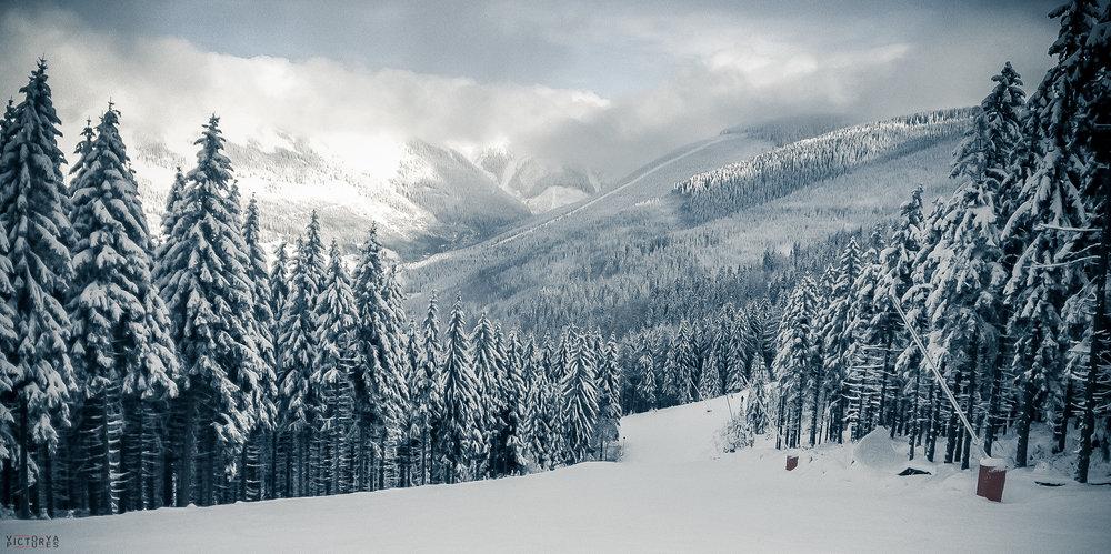 Snowboard2016_032.jpg