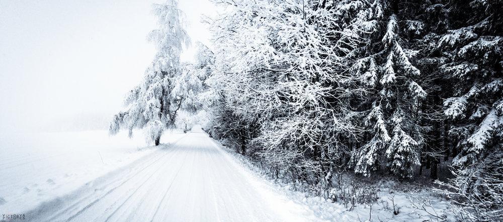 Snowboard2016_012.jpg