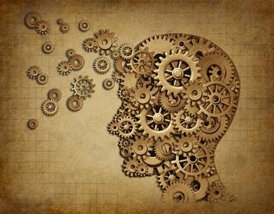 Brain Beauty
