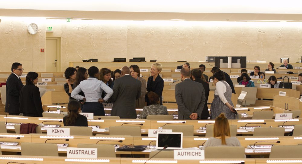 state Delegates confer in the final session of the 2nd meeting of the un intergovernmental working group/victor barro