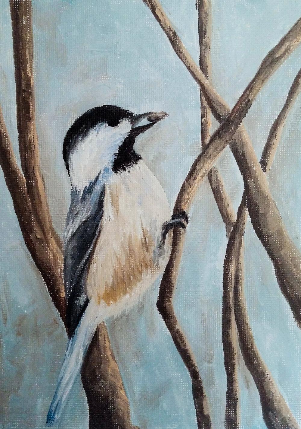 Day 12 - Bird