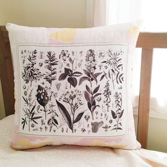Remember the botanical panel I posted a while ago? Here's another one from the same collection that I made into a pillow! Throw pillows are excellent for up-ing your home decor game 😉 . . . #homedecor #custommade #customsewing #botanicalfabric #botanicaldrawing #botanicals #homedec #decorativepillow #sewist #seamstress #diystyle #diyhome #imakethings #handcrafted #handmade