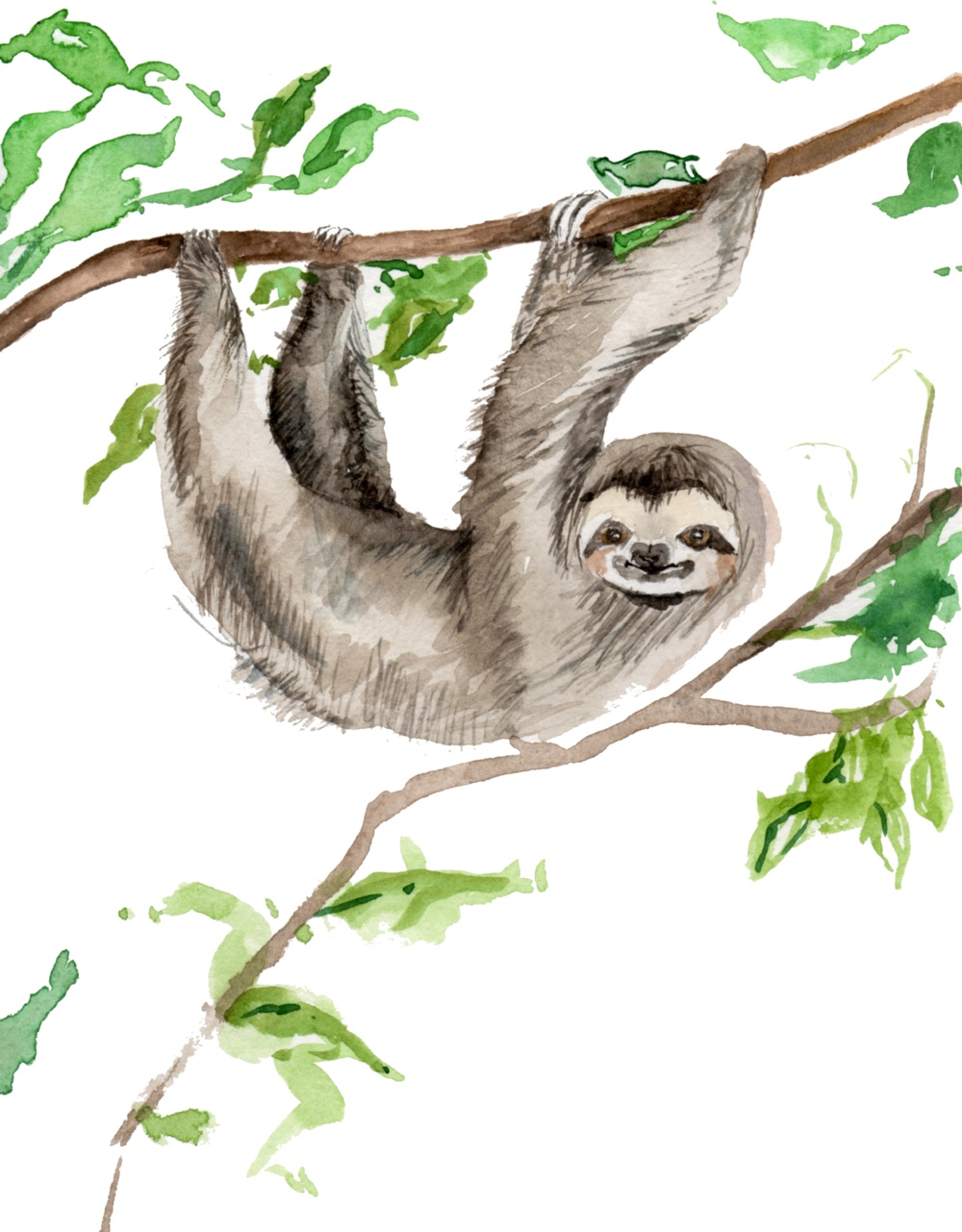 hangingsloth-10.16.png