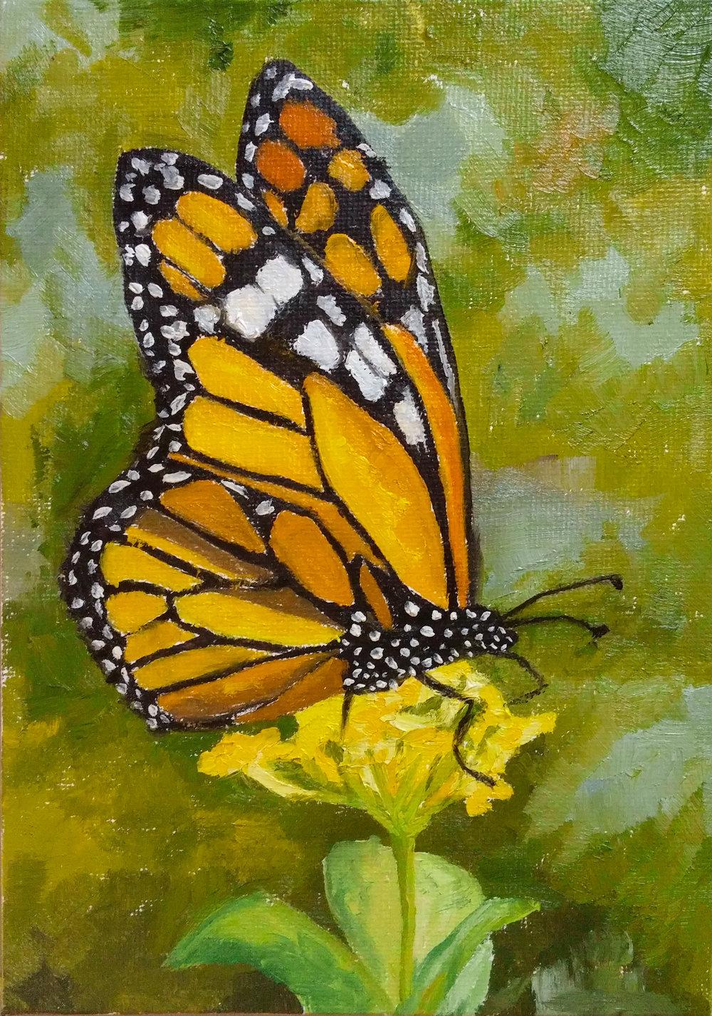 Day 30-Butterfly.jpg