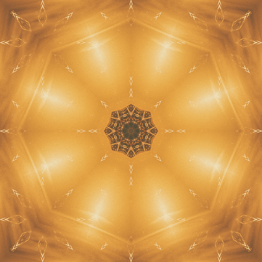 Tiger Flower Circle Sun - Remixes 2012 Overlap