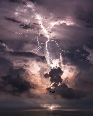 Una criatura que el fotógrafo identificó como un murciélago grande vuela frente a la cámara justo en el momento en que un relámpago cae en el Catatumbo Lightning Camp, que garantiza a los turistas que podrán dormir en medio de una tormenta dramática. Jonas Piontek