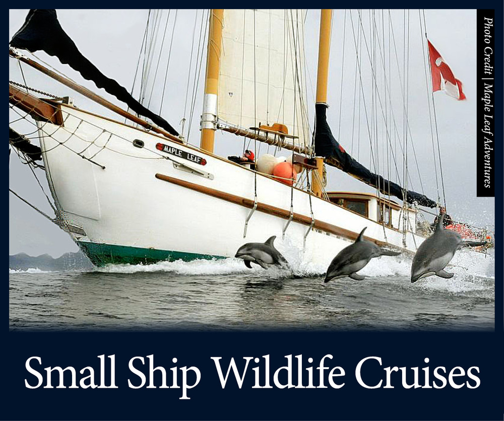 small ships 4 edited 7-11-14.jpg