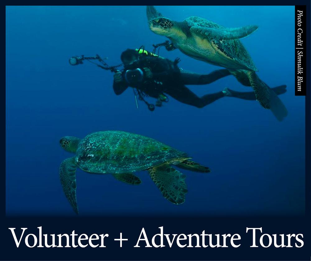 Volunteer + Adventure 1.jpg