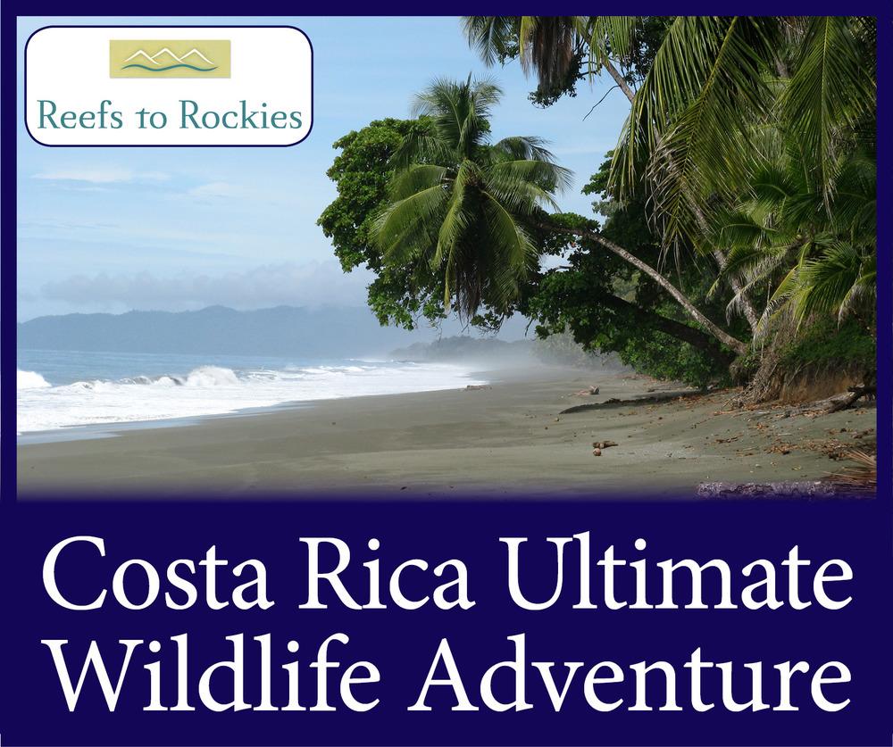 StW Costa Rica Wildlife Adventure.jpg