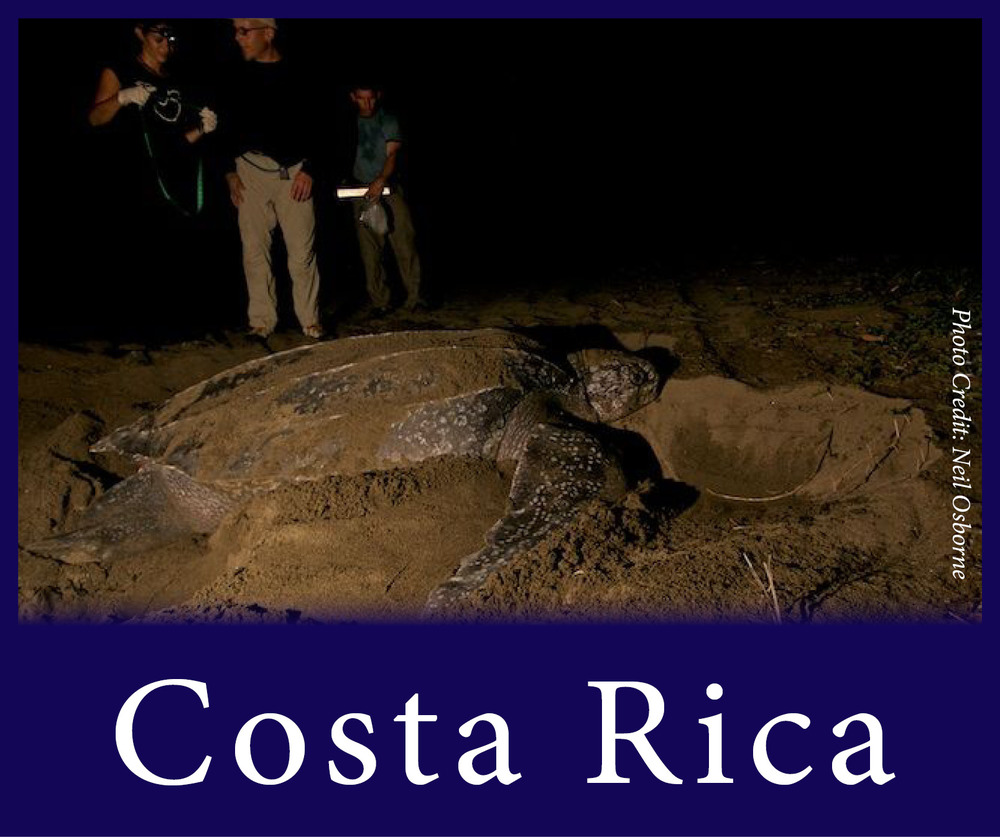 StW Costa Rica edited 2.jpg