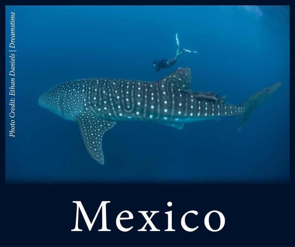 StW Mexico.jpg