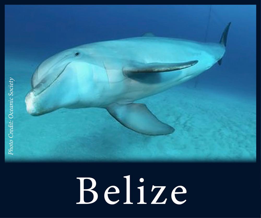 StW Belize.jpg