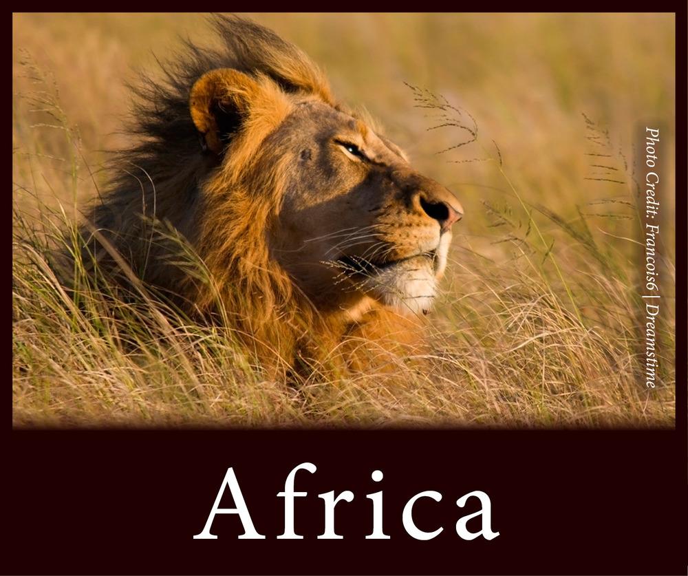 StW Africa.jpg